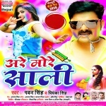 Dj Remix Are More Saali Ho Ab Jake Baji Dunu Hathe Nu Tali.mp3 Pawan Singh,Priyanka Singh New Bhojpuri Mp3 Dj Remix Gana Video Song Download
