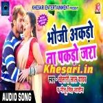 Bhauji Akado Na Akbar Pakado Jara (Khesari Lal Yadav) Download