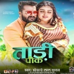 Tadi Pike (Khesari Lal Yadav) Mp3 Song Download